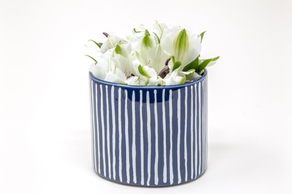 Fringe_Planter